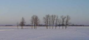 Winterlandschaft im Bunderhammrich
