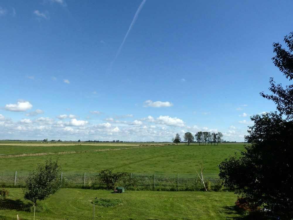 Ostfriesland Insight #2