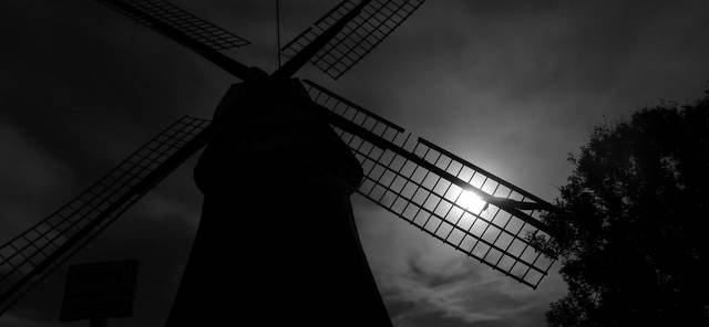 Mühle Wynhamster Kolk