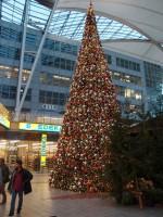 Winterbaum Flughafen München