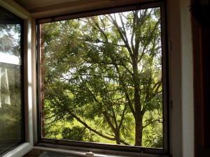 Ausblick Bürofenster