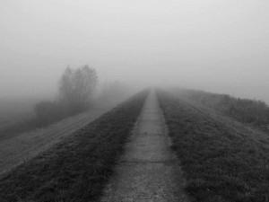 Nebel an der Aa