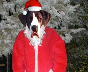 lilli als Weihnachtfrau