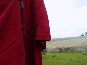 T-Shirt Wetter