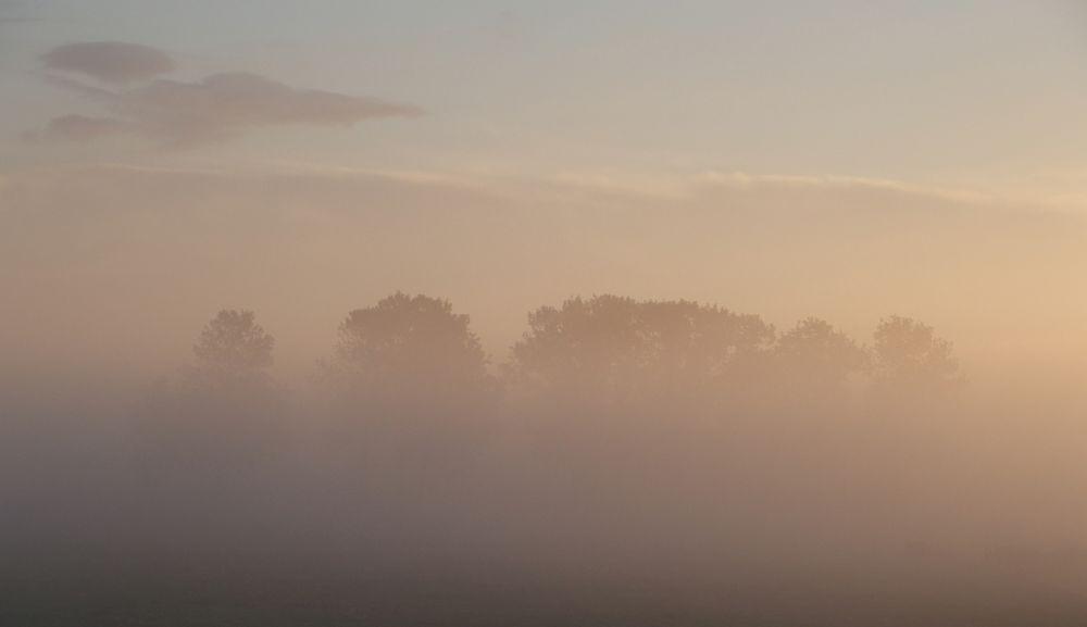Blick von der Terrasse / Sonnenaufgang bei Nebel