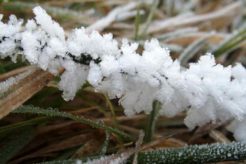 frostige Tage
