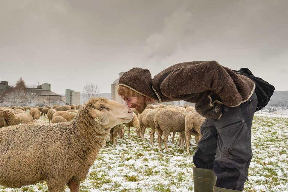 Sven de Vries mit Schaf